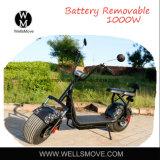 1000W二重シートの電気スクーターのScrooser Harleyの指定