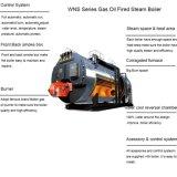 De automatische Industriële Diesel van de Buis van de Brand/Natuurlijke Stoomketel Met gas
