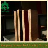 madera contrachapada de la melamina de la calidad de los muebles del color sólido de 18m m