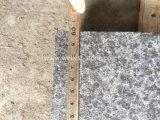 Azulejo anti de la piedra del resbalón del granito al por mayor del negro oscuro G684 de la fábrica