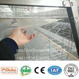 De Kooi van de Kip van de Jonge kip van het nieuwe Ontwerp en van de Lage Prijs voor het Landbouwbedrijf van het Gevogelte