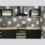 Ceramic의 결코 Fade Modern Style Wall Cladding Glazed Tile Made