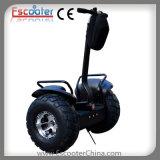 販売のための2動かされたスクーターのバランスをとっている李電池の自己
