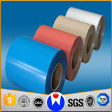 Le carbone doux a laminé à froid/la bande en acier galvanisée/par couleur enduite laminé à chaud