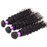 Волосы бразильской девственницы курчавых волос красотки Weave волны 3PCS волос 6A девственницы бразильской глубокой бразильской глубокой дешевой бразильские курчавые