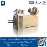 Motor elettrico 20kw, CA Electric Motor 20kw