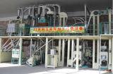 60のTons/24時間のムギの製粉の機械装置(6FTF-60)