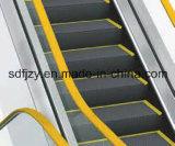 Цена эскалатора 35 градусов Fujizy дешевое