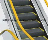 Preço barato da escada rolante de 35 graus de Fujizy