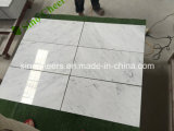 Het verschillende Mozaïek, de Tegels en het Marmer van Carrara van Ontwerpen Italiaanse Witte Marmeren