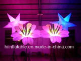 Catena di fiore gonfiabile partito/Wedding LED