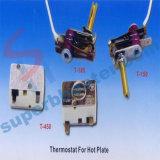 Verwarmers van de Warmhoudplaat van het Fornuis van het huishouden de Elektrische met Thermostaat
