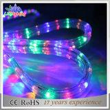 Lumière de corde de la lumière 12V DEL de la corde 3600LED de la décoration 100m de vacances
