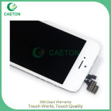Экран LCD оптовых продаж с агрегатом экрана касания на iPhone 5