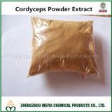 100%サポート免疫組織のためのCordycepicの自然なCordycepsの菌糸体の粉の多糖類か酸