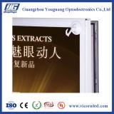 Hotsale: 가벼운 상자를 광고하는 알루미늄 자석 LED