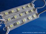 5pieces LED를 가진 DC12 에폭시 LED 모듈을 판매하는 높은 광도 공장