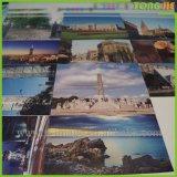 Kundenspezifischer Vinylaufkleber des Stapel-Drucken-Import-3D Wand