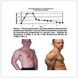 최고 반대로 말라리아 분말 자연적인 Artemisinin 근육은 테스토스테론 Propionate를 강화한다