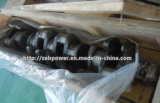 글로벌 Service Cummins Engine Parts 4CT Crankshaft (3608833)