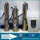 Pompes submersibles thermiques à courant continu 100% pour le mur d'eau
