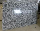 Het grote Grijze Graniet van het Graniet van de Bloem G439