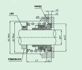 Guarnizione meccanica con muggito di gomma (FBD)