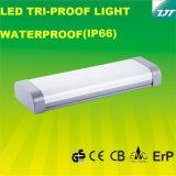 セリウムはIP66の3FT LEDの三証拠ライトを承認した