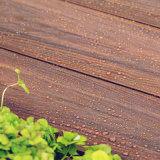 Outdoor hueco Wood Plastic Composite Flooring para Swimming Pool