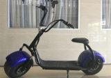 2016 Eletriceのスクーターの工場価格の熱い販売の電気オートバイのバイクの前部弱まる1000W Eスクーター