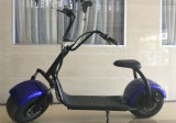 E-Самокат 1000W горячего Bike мотоцикла сбывания электрического передний амортизируя