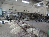Fundição de aço da alta qualidade para a peça do equipamento