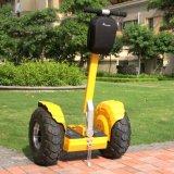 2 Rad-Selbst, der elektrisches Fahrrad balanciert