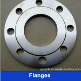 Forged Weld Neckの304 304L Stainless Steel Flange (WN)