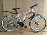 アルミニウムLike Suspension Fork (AOKMB004)が付いている山Bike