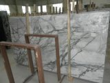 Countertops와 Building Materials를 위한 파란 Orchid Marble Slab