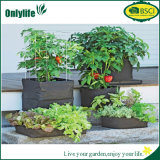 Onlylife PE 직물 야채 꽃은 부대를 증가한다