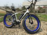 中心モーターを搭載する新しい脂肪質のタイヤの電気バイク
