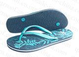 Ботинки сандалии Flop Flip тапочки лета для женщин (RF16255)