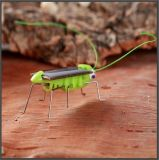 子供のギフト知的なDIYの太陽おもちゃの昆虫のイナゴのバッタ#054