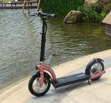 Empurre 300W Scooters Dobráveis Motorizados Com Ce