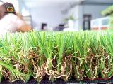 Regard artificiel de bonne qualité de nature de pelouse