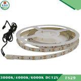 Indicatore luminoso della striscia 3014 SMD del LED (IP22, 12W /M, 120 LEDs/M)