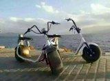 Grande rotella di mobilità/motorino elettrico motorino 800W Citycoco della gomma