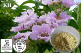 Lutter contre l'acide 1%~98% de Corosolic d'extrait de lame de Diebetes Banaba