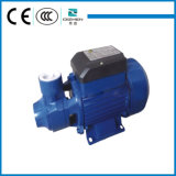 Clean Water를 위한 국내 QB60 220V 0.5HP Small Vortex Electric Water Pump