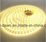Indicatore luminoso luminoso della corda SMD2835 alto 110V/220V (SMD2835-120)
