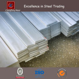 Steel laminado en caliente Flat Bar Used para Prefab House (CZ-F49)