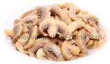Hotsale enlatou o cogumelo P & S