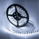 SMD2835 600LEDs Tiras flexibles blancas del LED